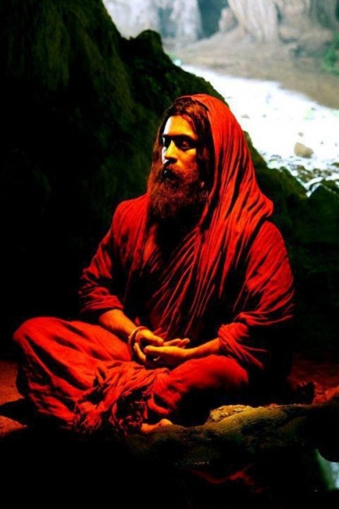 bodhidharma surya