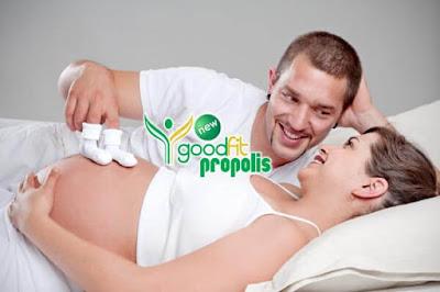 propolis untuk ibu hamil