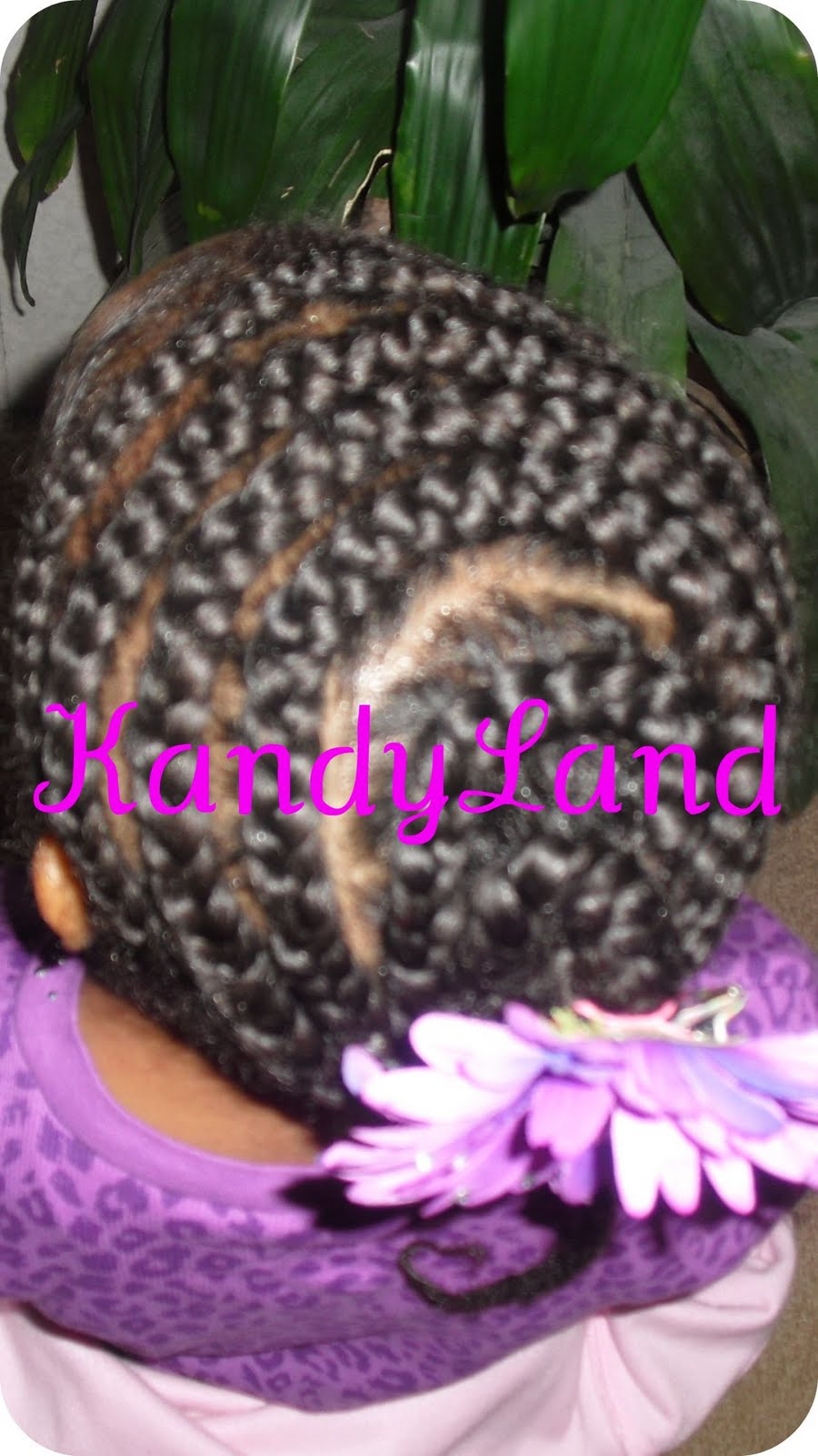Kandyland Circle Braid Beehive Style