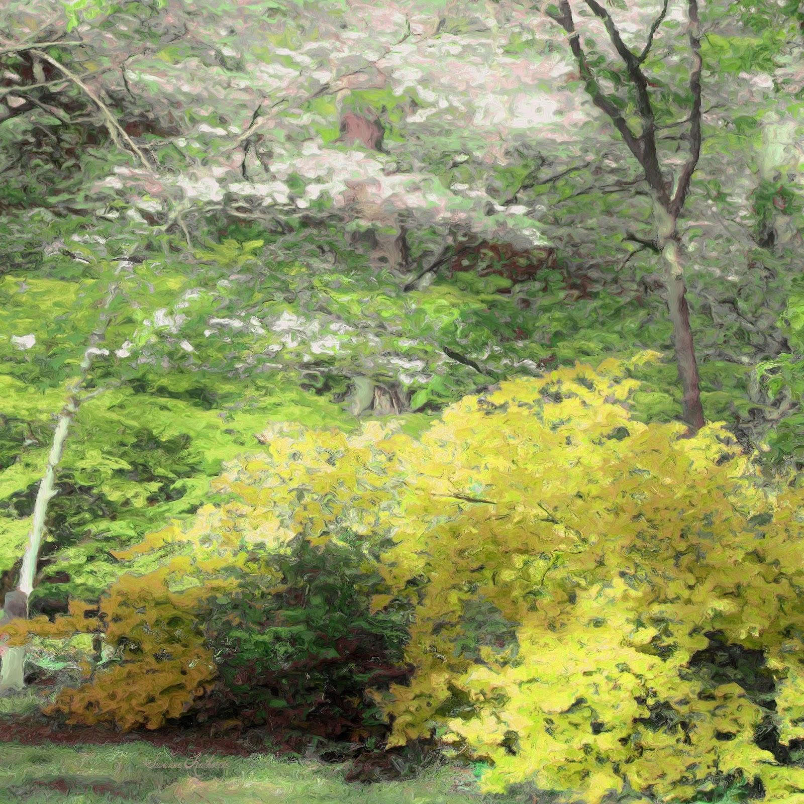 Fantastic Dogwood Tree Colors Illustration - Coloring Page ...