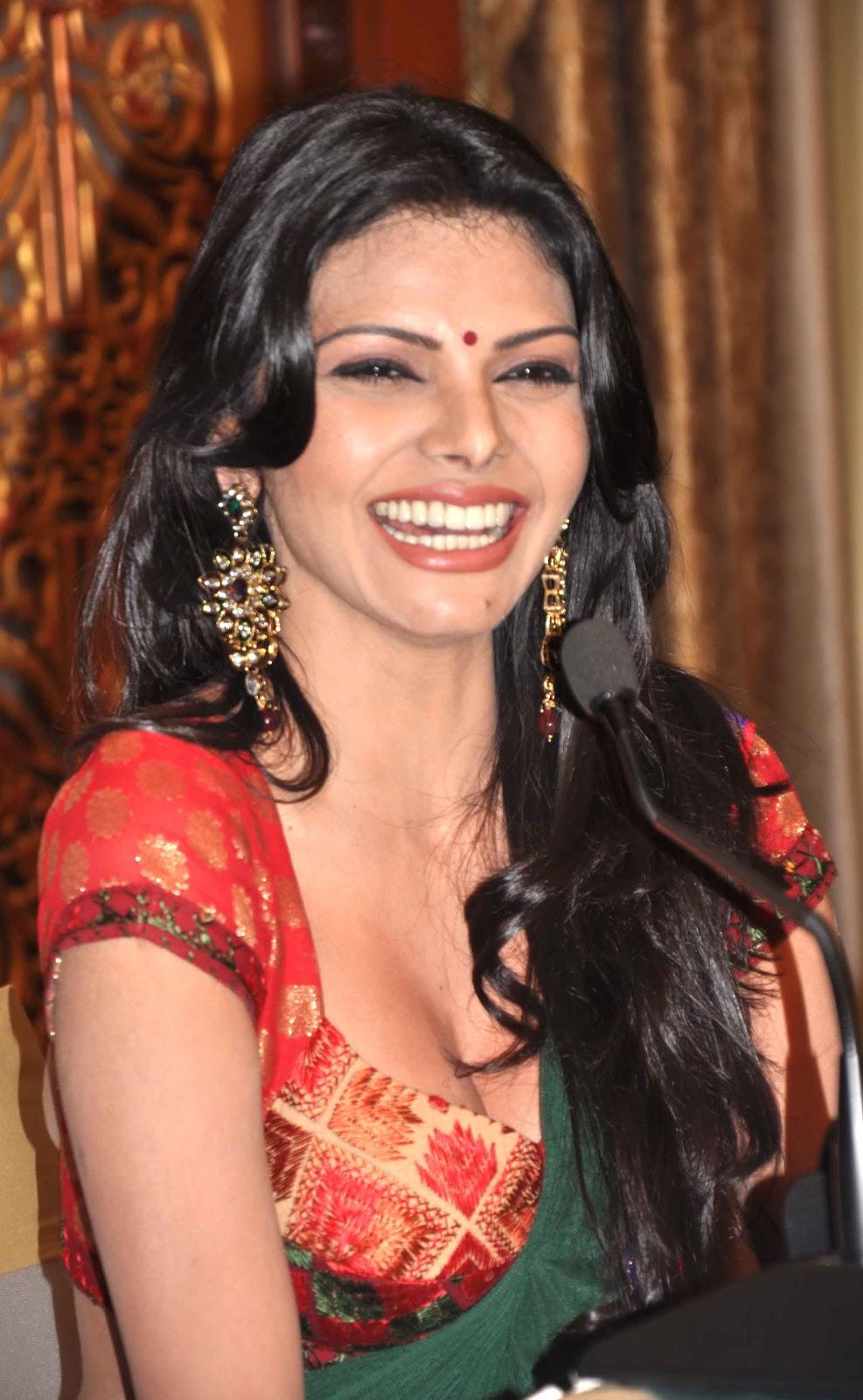 Sherlyn Chopra Hot Photos In Sareelatest Telugu-5302
