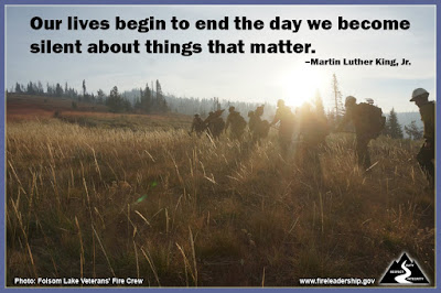 Our lives begin to end the day we become silent about things that matter. – Martin Luther King, Jr.