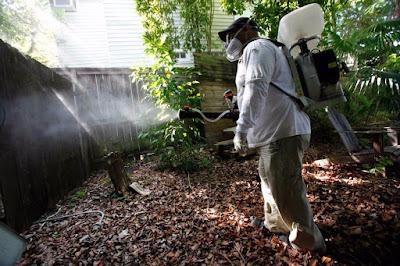 Θεσπρωτία: Ξεκινάει το πρόγραμμα καταπολέμησης κοινών – ανωφελών Κουνουπιών