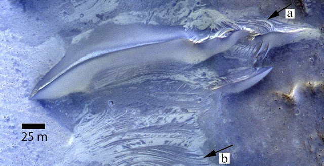 Striations exposed on the surface between dunes indicate fluctuating levels of salty groundwater. a) Exposure of putative crossbeds on windward slope of dunes on Mars b) Interdune strata exposed in planform showing contrasting albedo and crosscutting relationships similar to that exposed in the dune. Subset of false-colour HiRISE image ESP_013319_1685. The Infrared, red and blue bands are displayed as red, green and blue.
