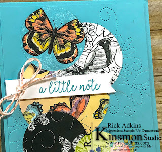 Botanical Butterflies Designer Series paper, Saleabration, stampin up, Rick Adkins