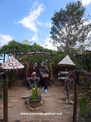 Spot Taman Jamur di Jurang Tembelan