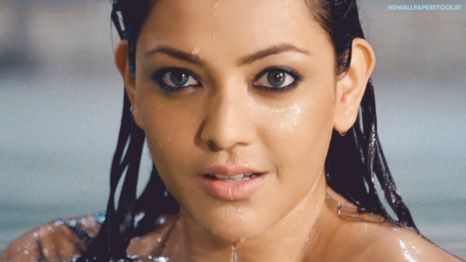 KAJAL AGARWAL HOT IN SAREE IN BUSINESSMAN