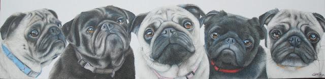 Pug Portrait oil on canvas