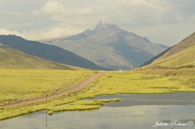 Altiplano au Pérou
