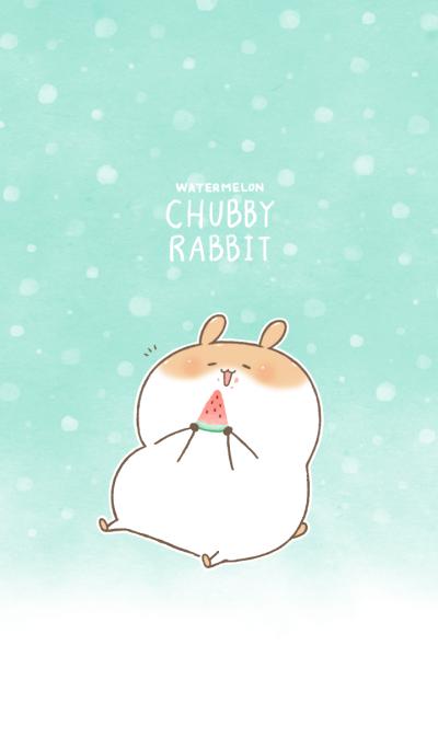 Chubby Rabbit-Watermelon