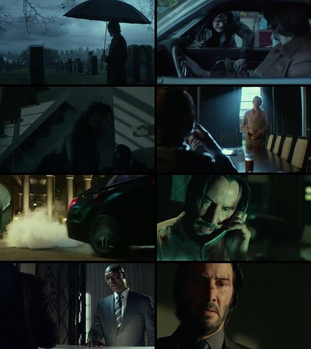 John Wick 2014 Dual Audio Hindi 720p BluRay