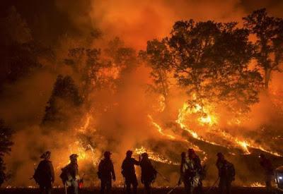 Kebakaran Hutan di Indonesia (rakyatjateng.fajar.co.id)