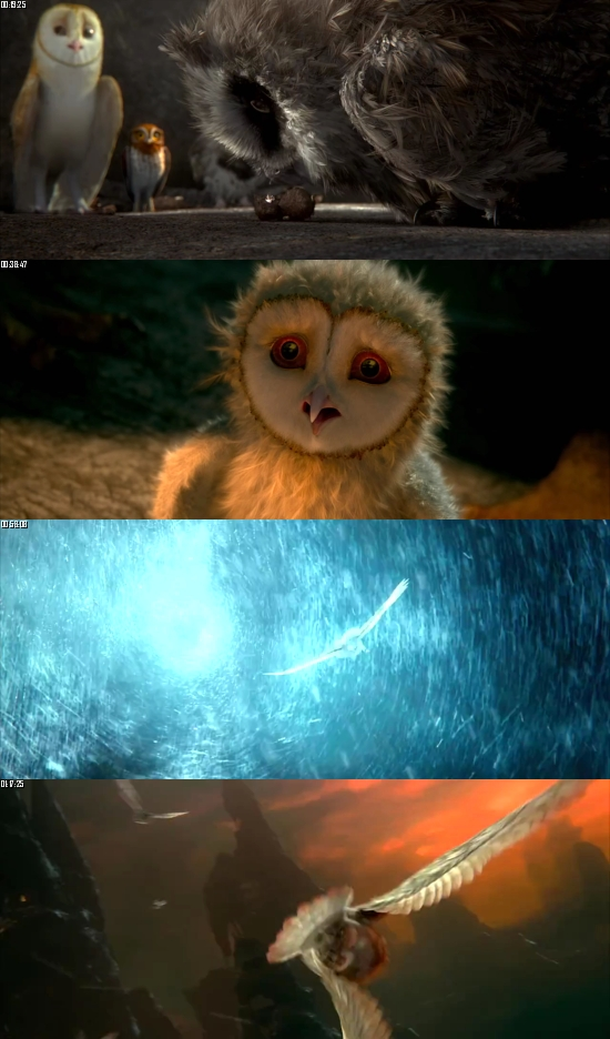 Legends Of The Guardians The Owls Of Gahoole 2010 Dual Audio Hindi 720p BluRay 750mb