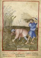 fol-48-bnf-paris-giov-de-grassi-visocnti-fine-xiv-sec