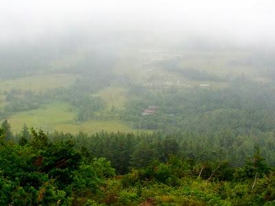 尾瀬ヶ原の湿原その2
