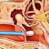 Pengalaman: Telinga Berdenging, Sakit dan Obat Sakit Telinga