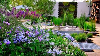 Jardines Terapéuticos. El Jardín de Nigel Dunnett en Chelsea Flower Show trasladado a un hospital