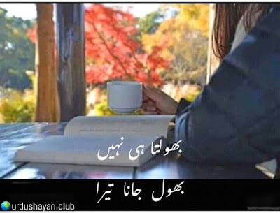 Bhoolta He Nahi..  Bhool Jana Tera..!!  #Poetry #urdushayari #heartless
