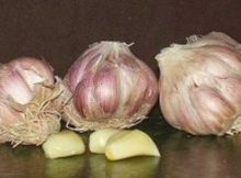If You Have One of These Conditions, You Should Stop Consuming Garlic Immediately! It Is Very Dangerous!