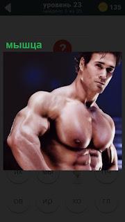 Торс мужчины покрыт мышцами, грудь и руки напряжены, прямой взгляд