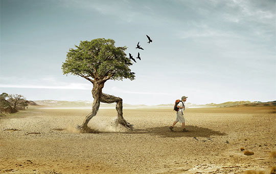 Creative and Unique Photo Manipulation
