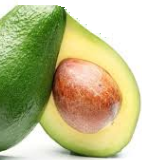 Serious Side Effects Of Avocados (Butter Fruit) Sensitivity To Latex