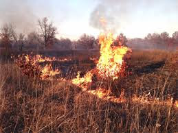 Harmattan: NEMA cautions against arbitrary bush burning