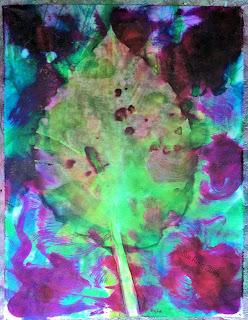 Solarfast prints_Sue Reno_Image 62