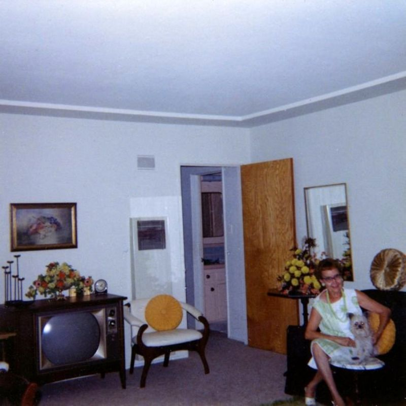 1960s living room 66 cool snaps that capture in their living room 10390
