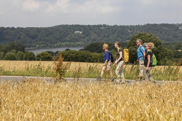 Vier Wanderer auf dem neuen BaldeneySteig