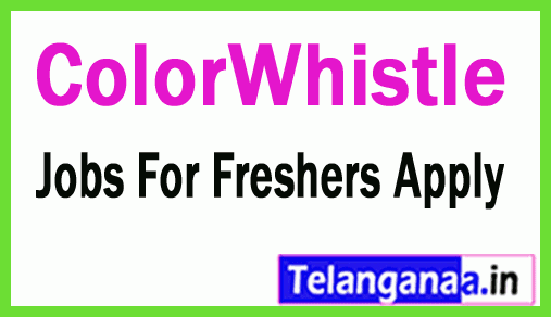 ColorWhistle Recruitment Jobs For Freshers Apply