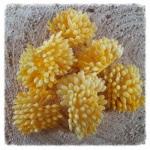 http://www.foamiran.pl/pl/p/srodki-do-kwiatow-mini-matowe-ZOLTE/847
