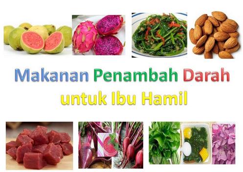 Makanan Penambah Darah Ibu Hamil ~ Makanan Sehat Yang Baik