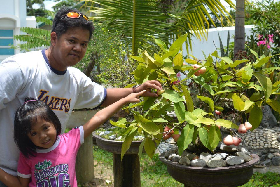 Weng Zaballa: Bonsai Plants, Rock Garden and My Kids