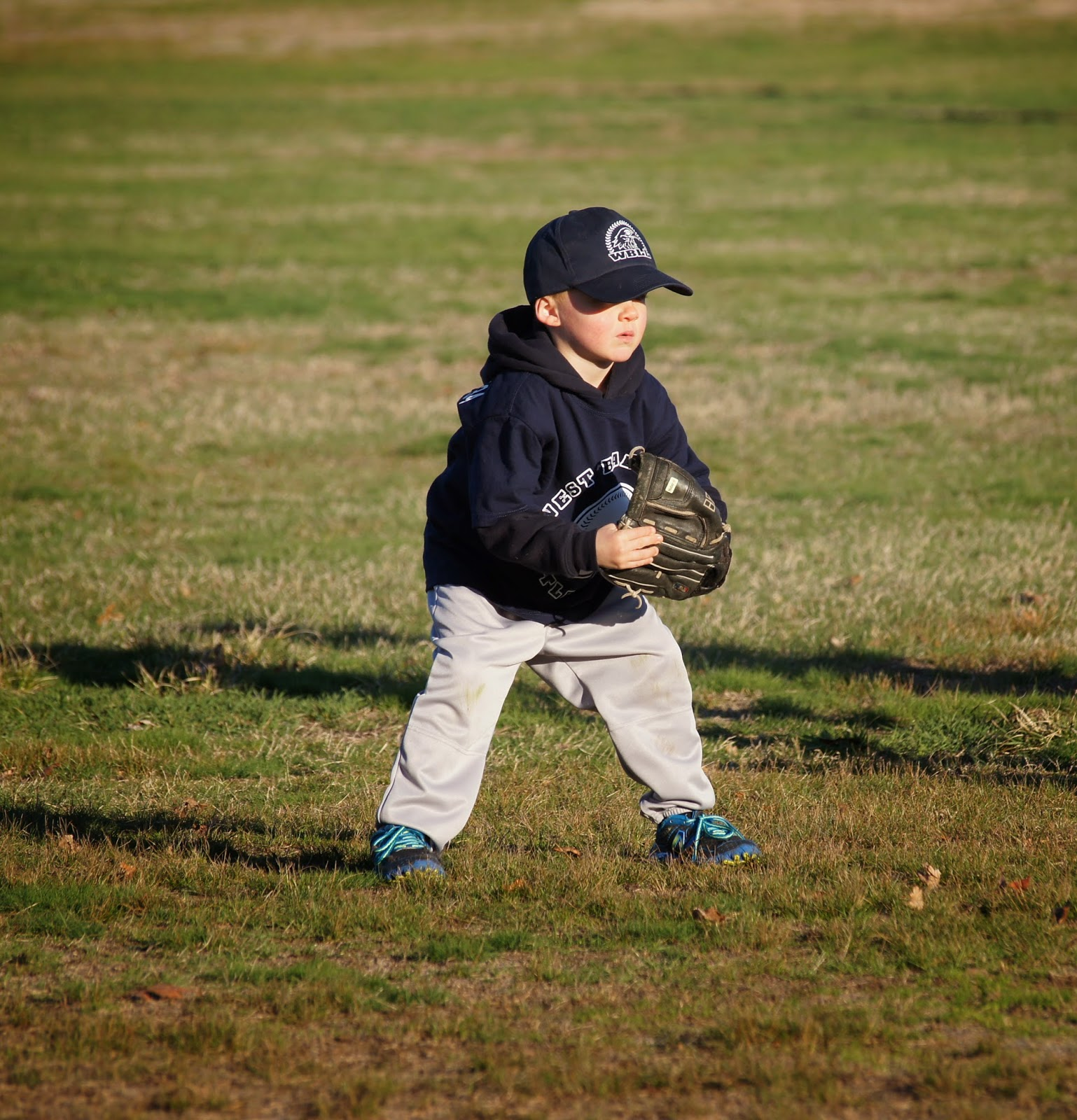 tball playing the field