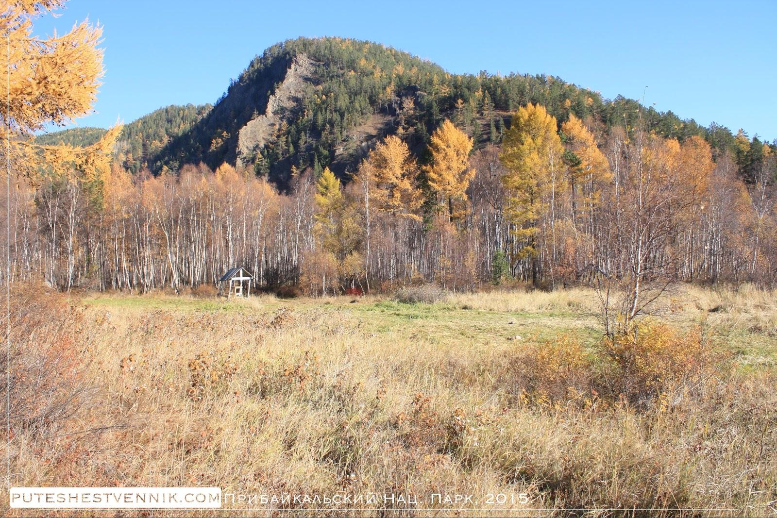 Гора и осенний лес