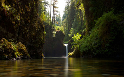Forêt et Cascade - Fond d'écran en Ultra HD 4K 2160p