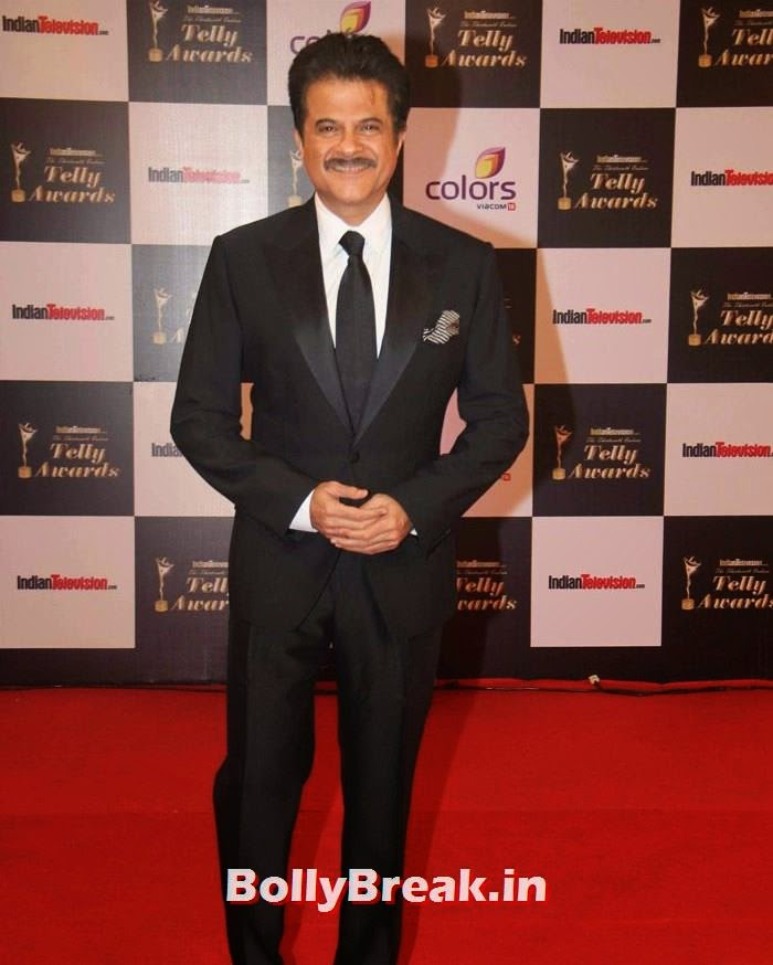 Anil Kapoor, Pics on Red Carpet of 13th Indian Telly Awards 2014