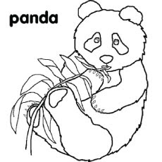 P For Panda Alphabets Coloring Page For Print