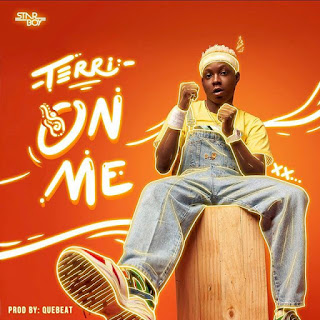 Terri – On Me (Prod. Quebeat)