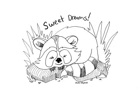 Rachel maybeth sleeping baby raccoon free coloring page for Baby raccoon coloring pages