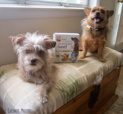 "Bailey and Jada with a box of ""Love"" from THK"