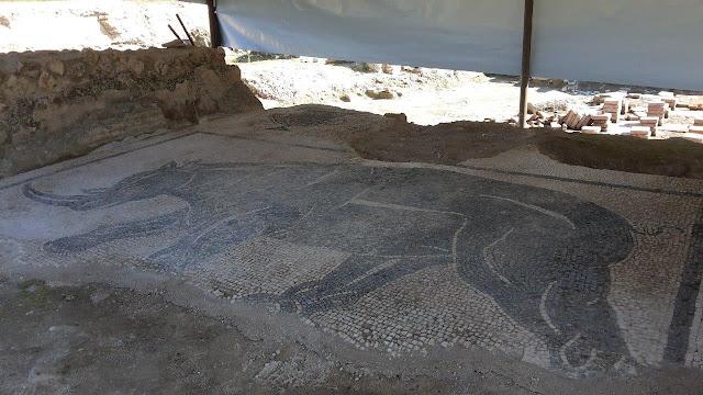 Monumental inscription and rare mosaic found at Roman Baths of Aquinum