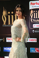 Sonal Chauhan in a stonework Floor Length Silver Designer Gown at IIFA Utsavam Awards March 2017 045.JPG