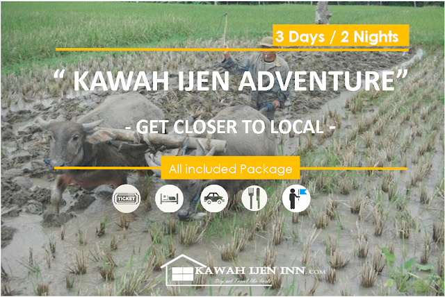 Kawah Ijen Adventure - 3 Days / 2 Nights