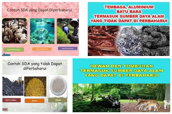 Pengertian & Contoh Sumber Daya Alam yang Dapat dan Tidak Dapat Diperbaharui