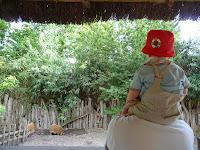 bébé au zoo