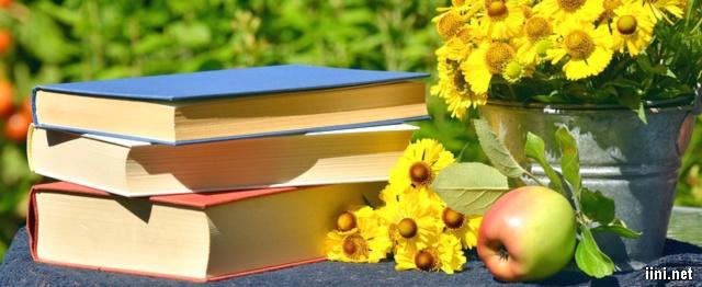 ảnh những cuốn sách và hoa cỏ