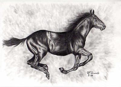 dibujo a lápiz de caballo