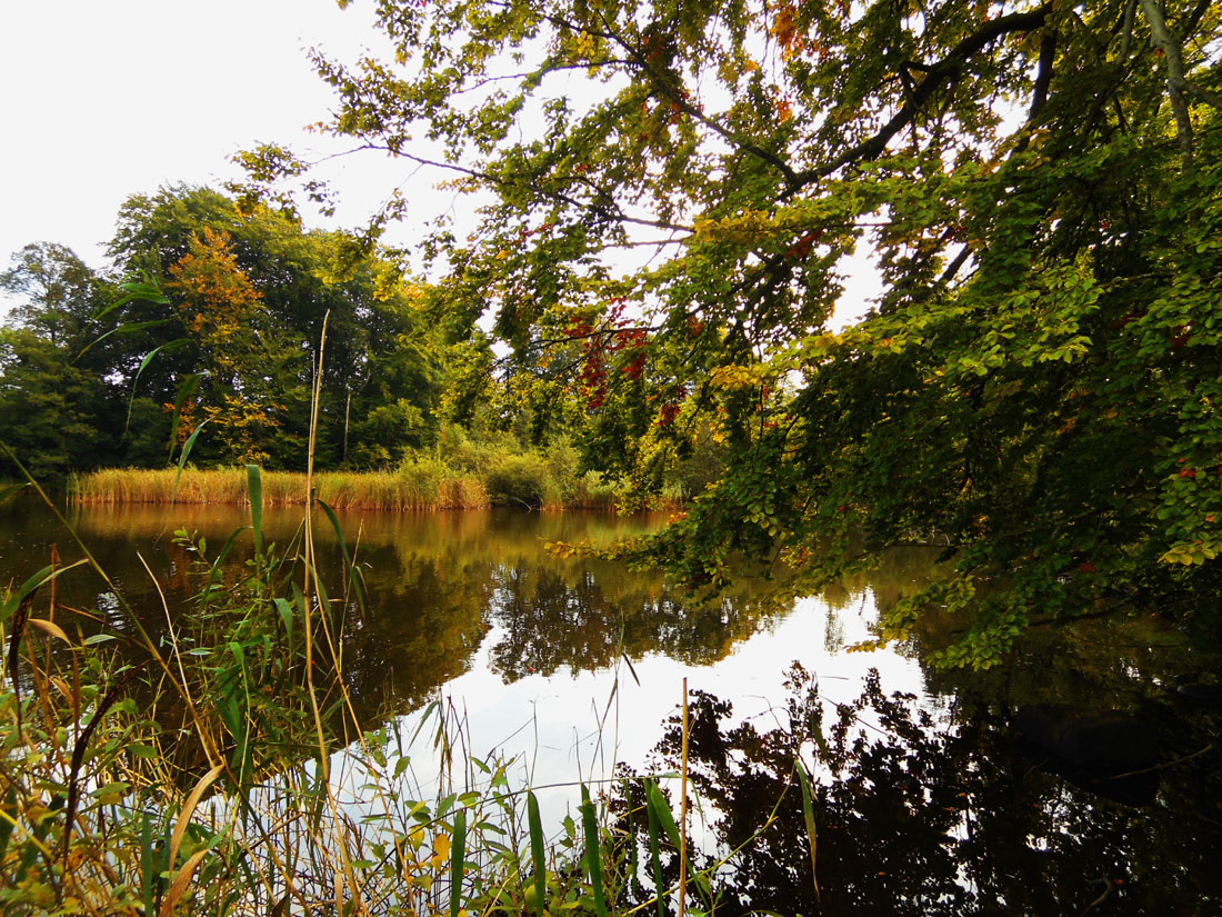Specchi d'acqua a Ovesholm